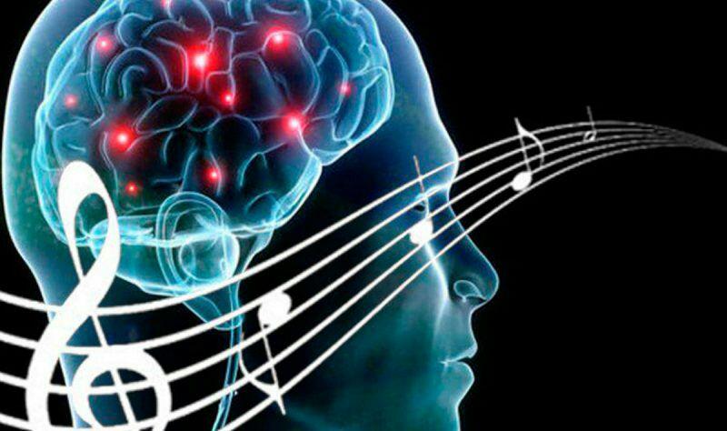 Psychological Science: Человеческий мозг оказался способен «предсказывать будущее»