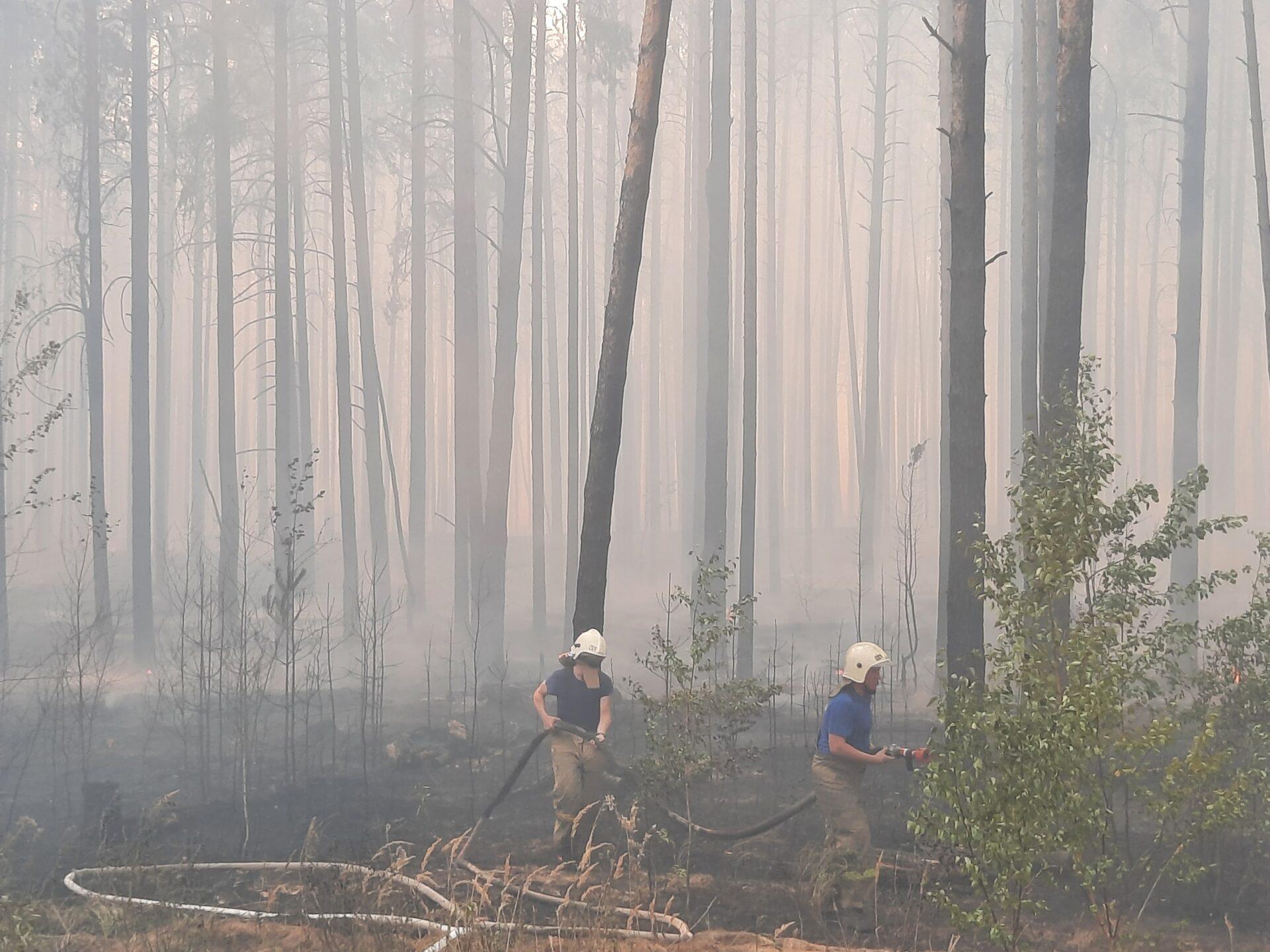 Более 1 тыс. человек тушат лесные пожары в Марий Эл