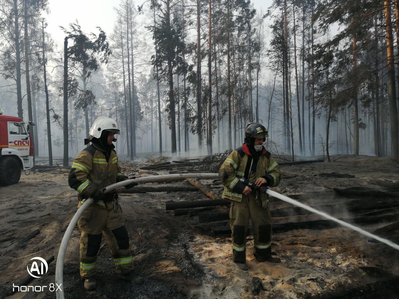 Активная площадь лесного пожара на территории Марий Эл увеличилась до 66,5 га