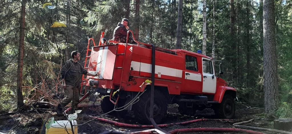 В Марий Эл продолжается ликвидация лесного пожара
