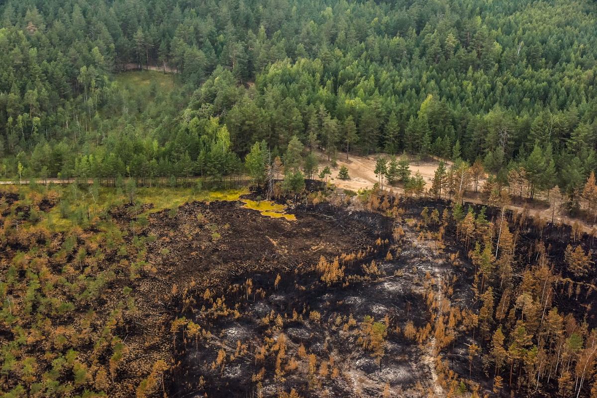 В Марий Эл обсудили участие добровольцев в тушении лесных пожаров