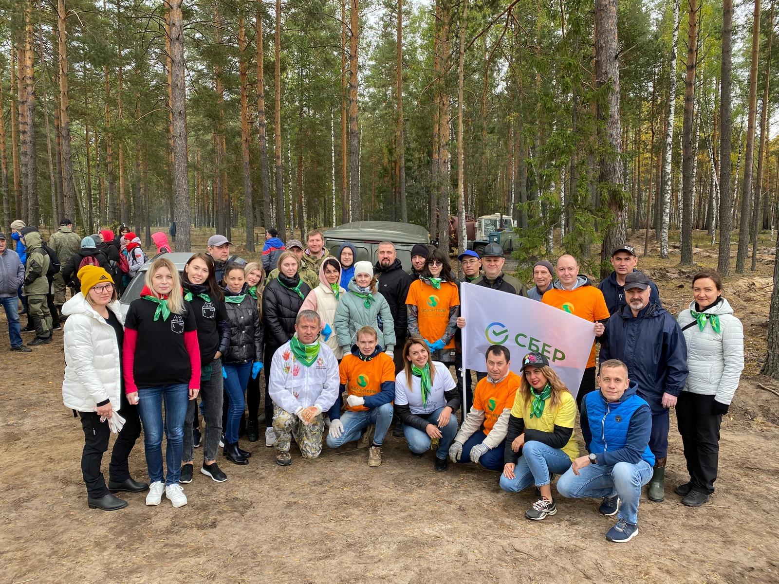 Сбербанк активно участвует в восстановлении лесного массива в Марийском крае после пожаров