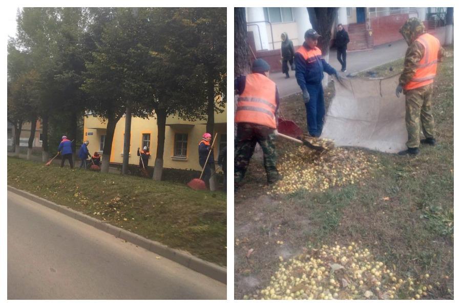 На улицах Йошкар-Олы стартовала уборка опавших листьев