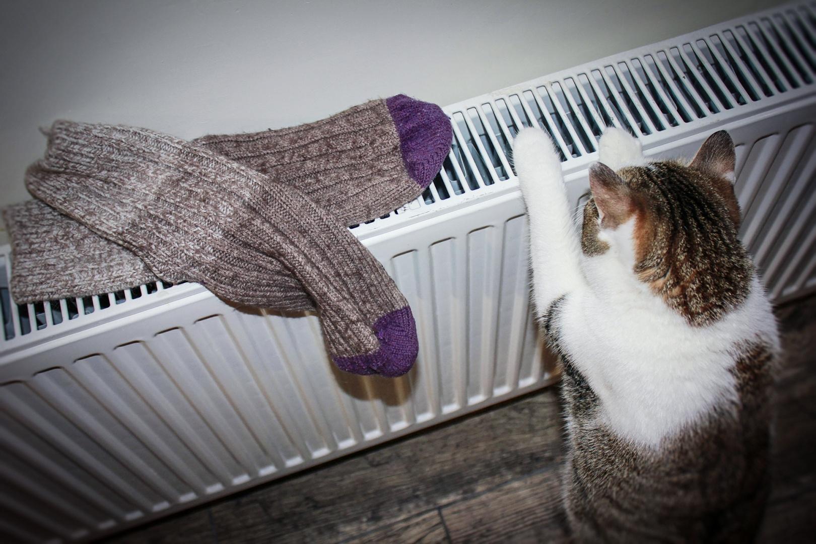 В жилых домах Волжска сегодня дали тепло