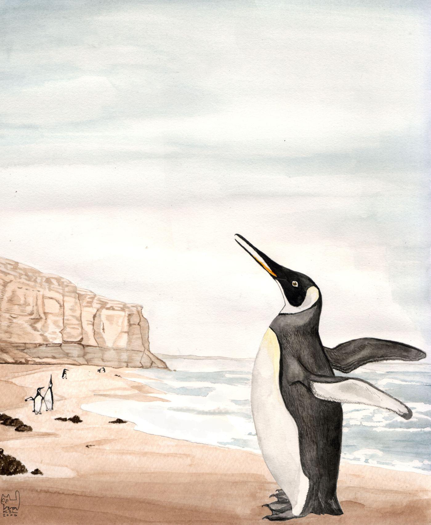 В Новой Зеландии учеными обнаружены окаменелости гигантского пингвина