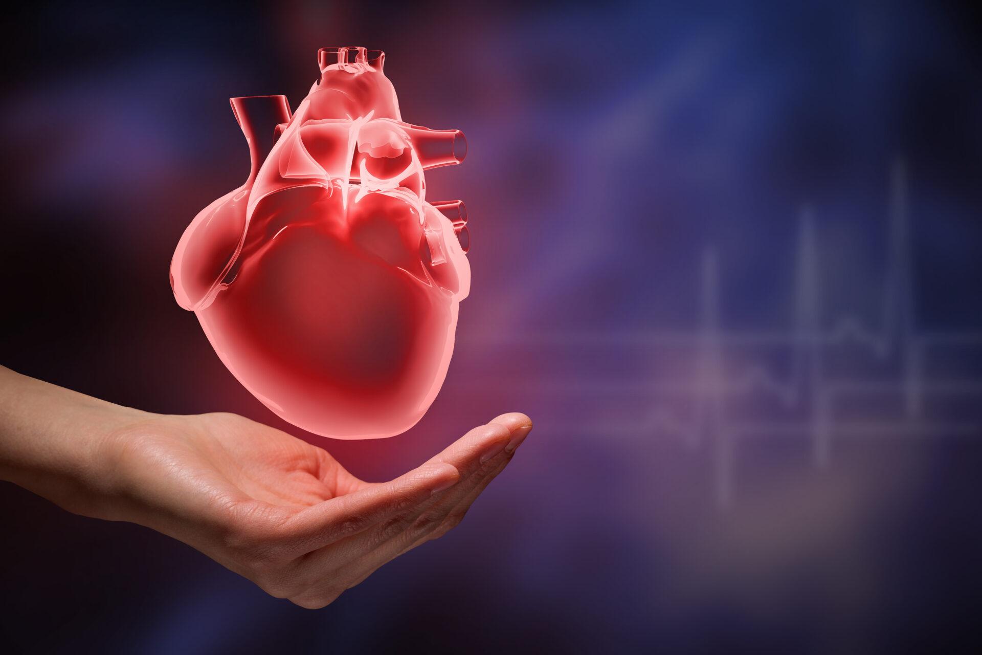 Эндокринолог Павлова сообщила, как улучшить здоровье сердца за 10 минут