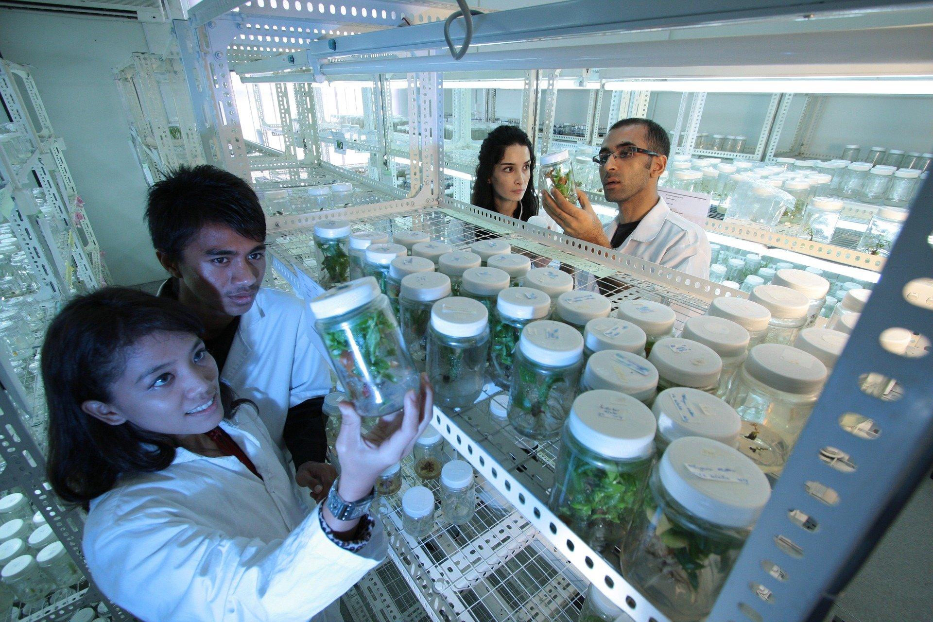 Представлены искусственные клетки, способные имитировать живые клетки