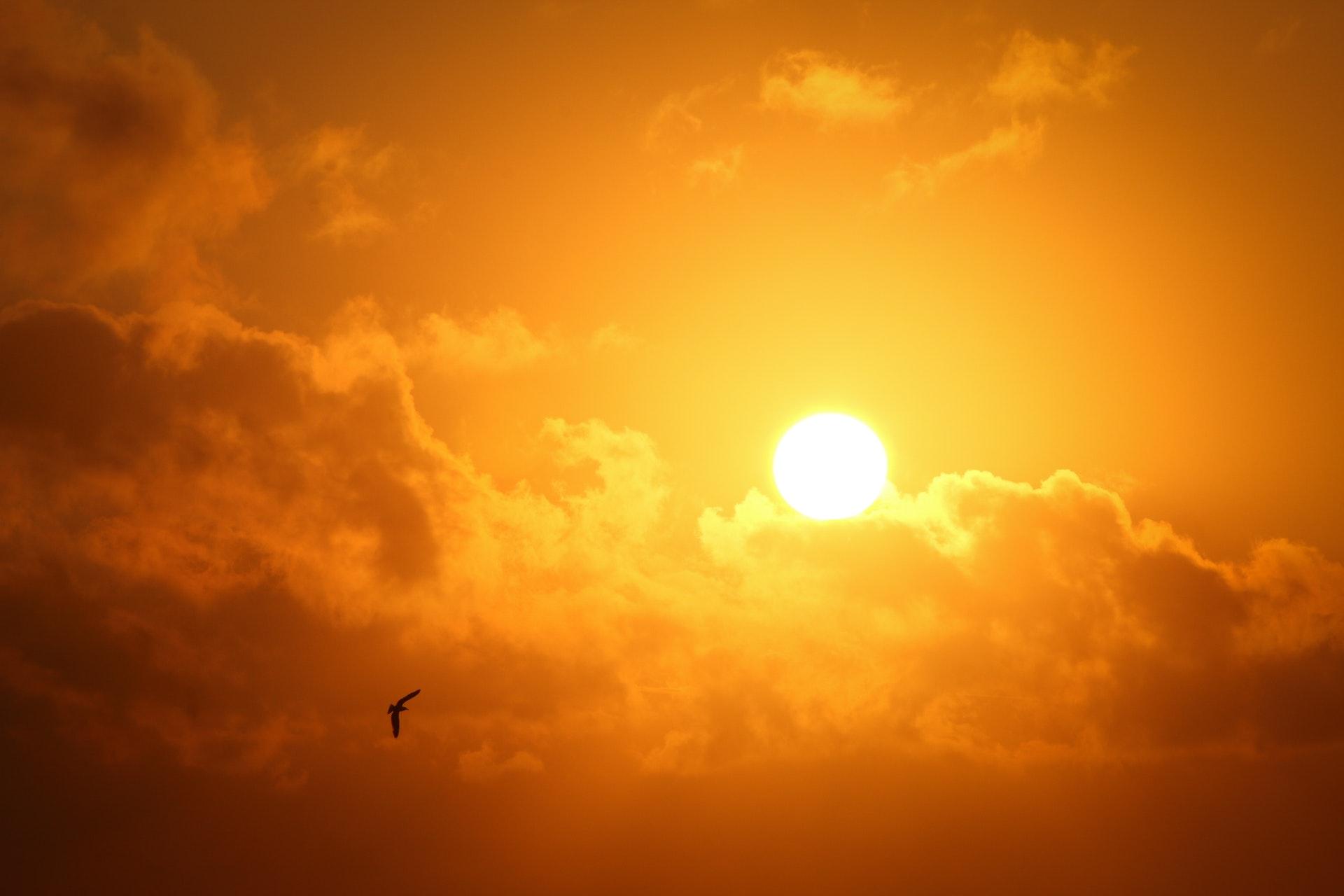 Ученым удалось обнаружить две неизвестные супервспышки на Солнце