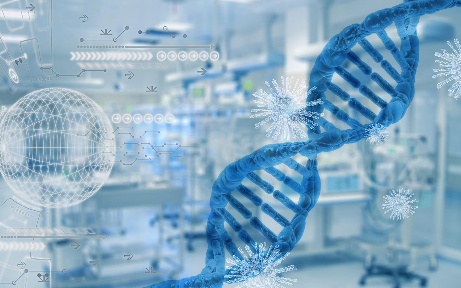 Ученые лабораторно вырастили модель человеческих легких для опытов с COVID-19