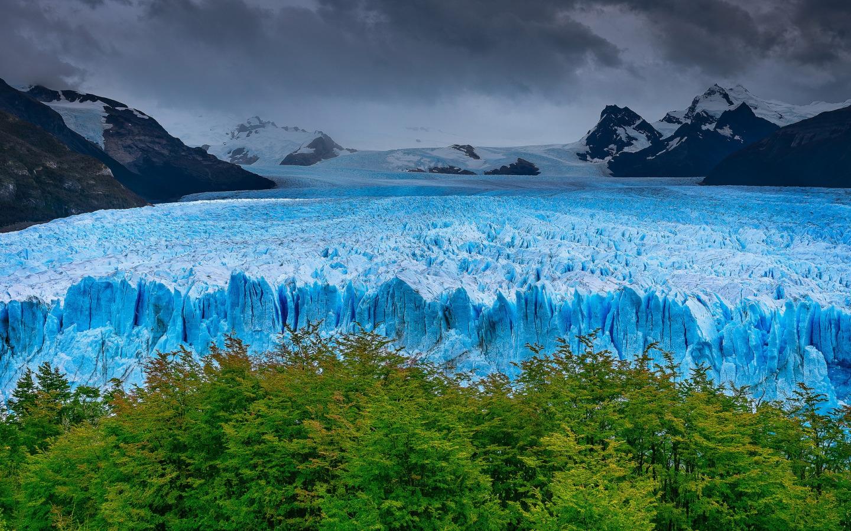 На Аляске найден древнейший лес, спрятанный под ледником