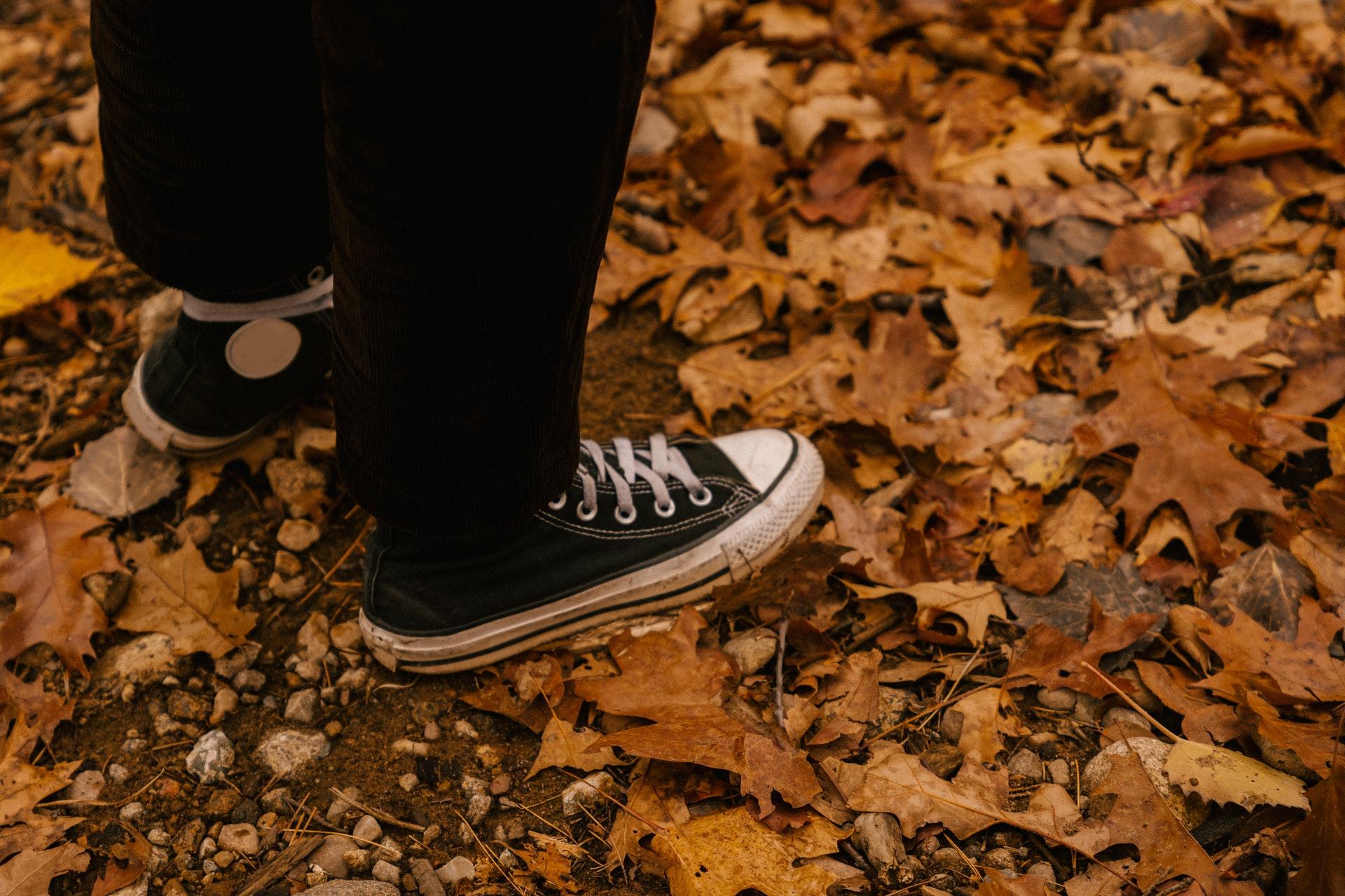 Иммунолог Болибок предупредил об исходящей от опавшей листвы опасности