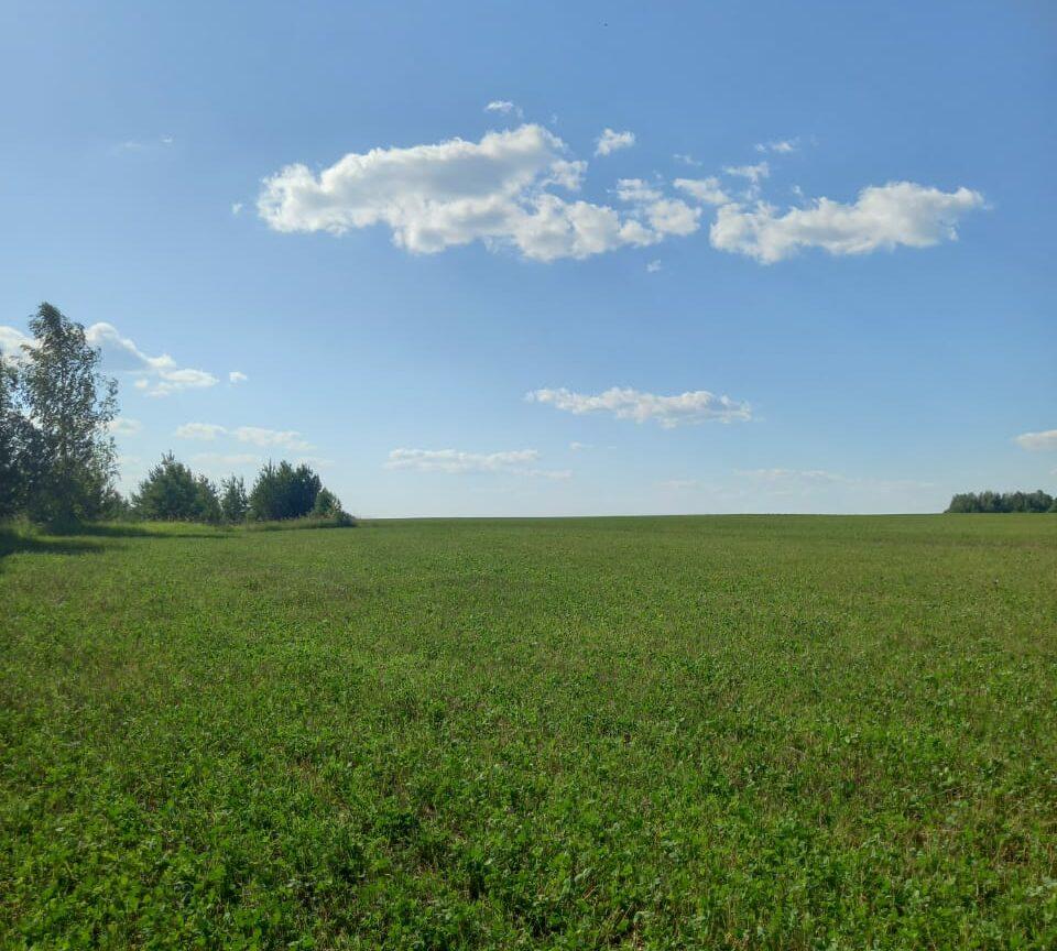 Росреестр: 2,5 тыс. га земель вовлечено в жилищное строительство в рамках сервиса «Земля для стройки»